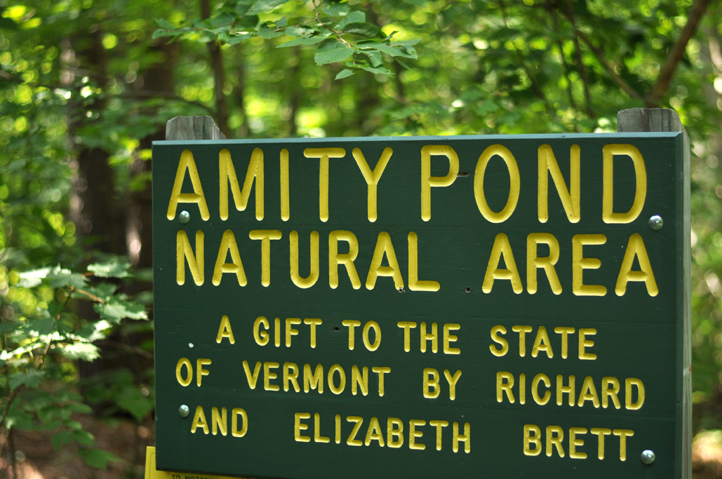 Unplugging at Amity Pond Natural Area in Pomfret