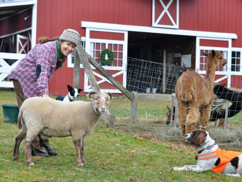 A Leap of Faith at Wing and a Prayer Farm