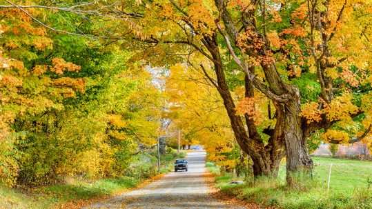 The Best of a Woodstock Fall Foliage Getaway
