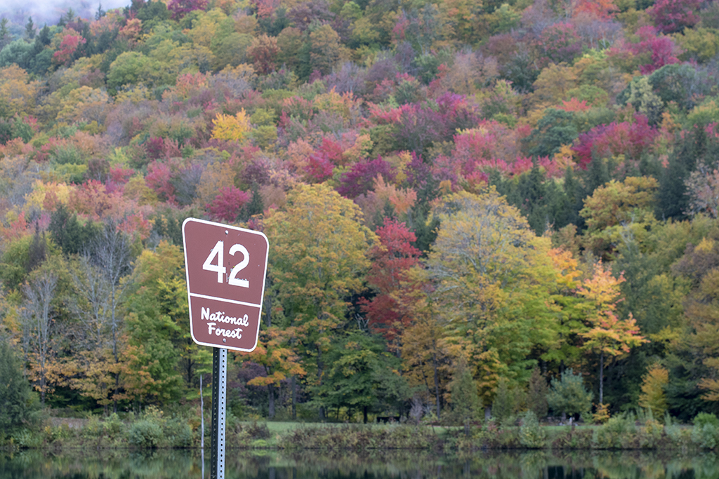 Things to Do in the Green Mountain National Forest